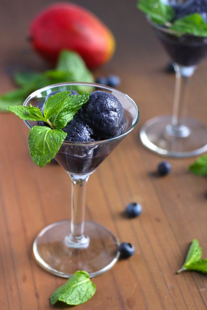 A martini glass filled with a delicious blueberry mango sorbet recipe on a rustic background.