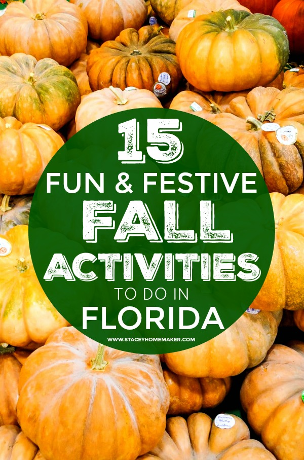 "A background image of multiple pumpkins with a label that says, ""15 fun & festive fall in Florida activities!"""