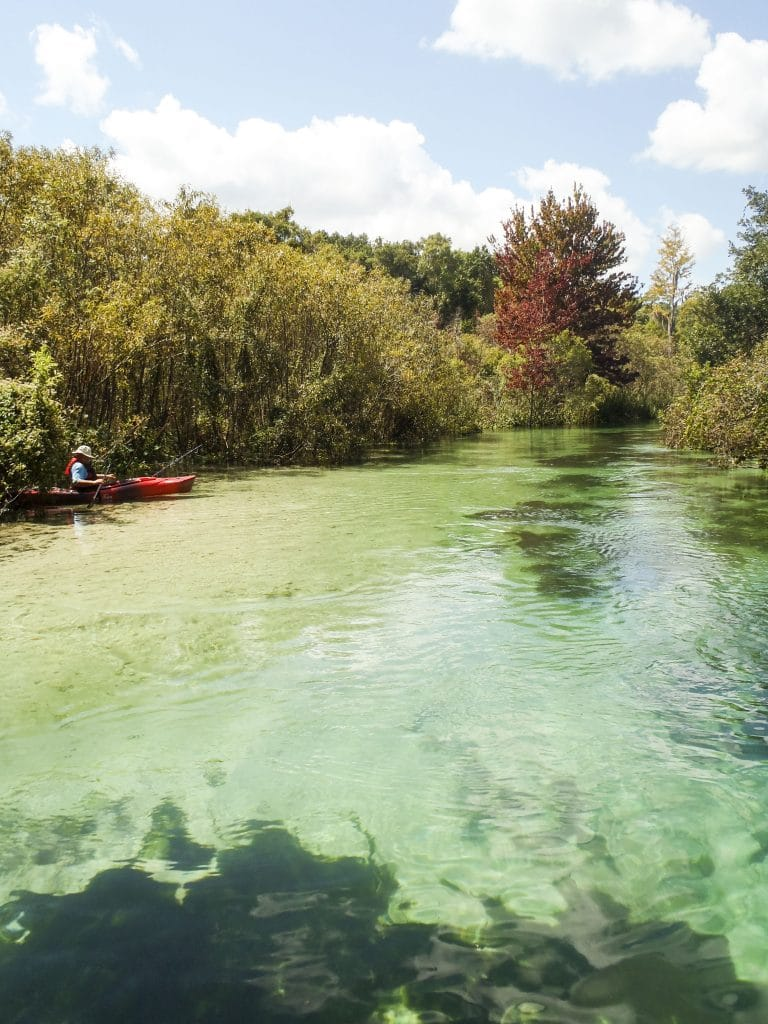 A man wearing a hat is fishing in his canoe which is parked on the bank of the Weeki Wachee River.