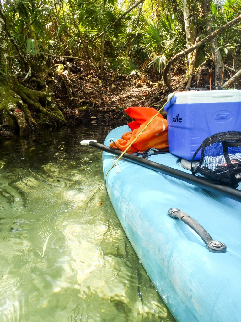 A blue stand up paddle board with a cooler strapped to is is parked on the Weeki Wachee river bank.