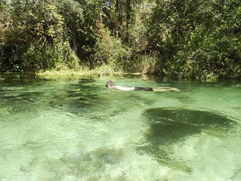 A man swimming underwater in the Weeki Wachee River.