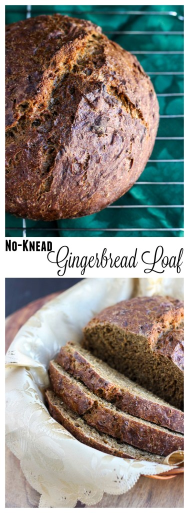 no-knead-gingerbread-loaf