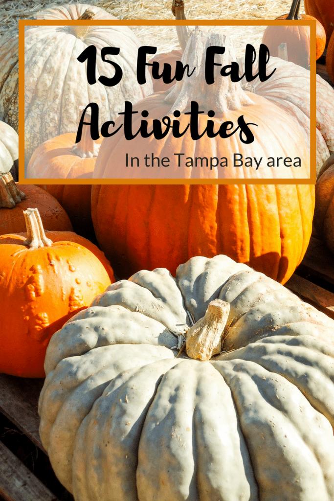 top-15-fun-fall-activities
