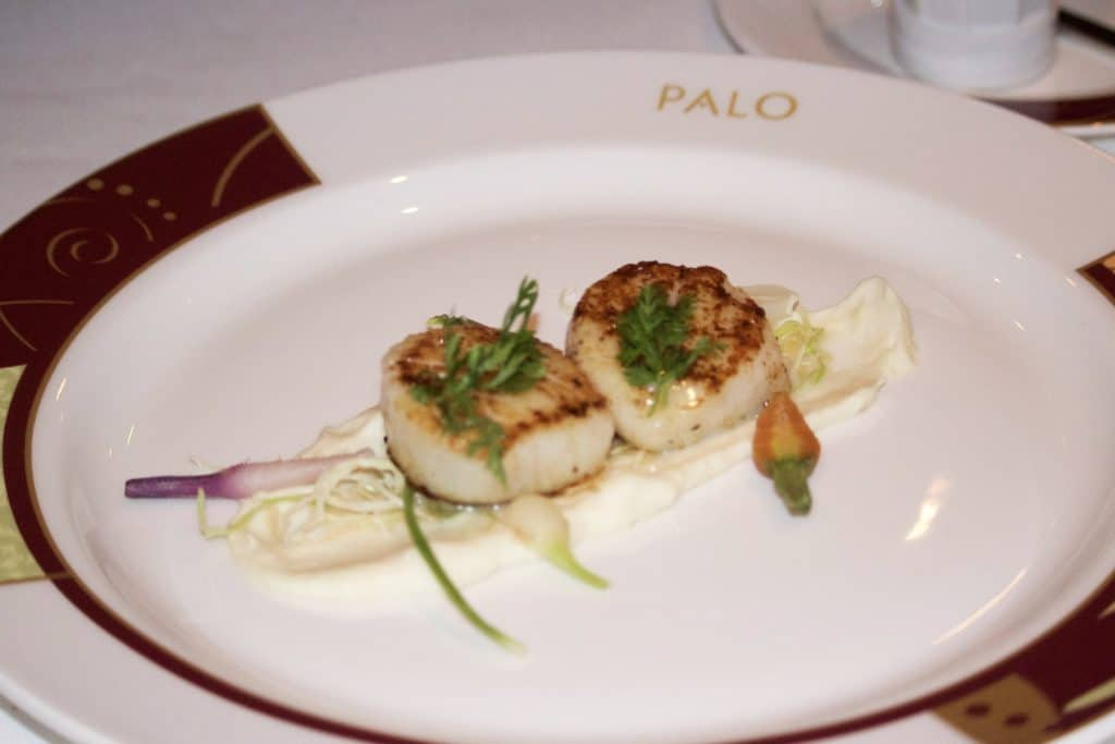 Two seared scallops on a white plate for dinner at Palo on the Fantasy.