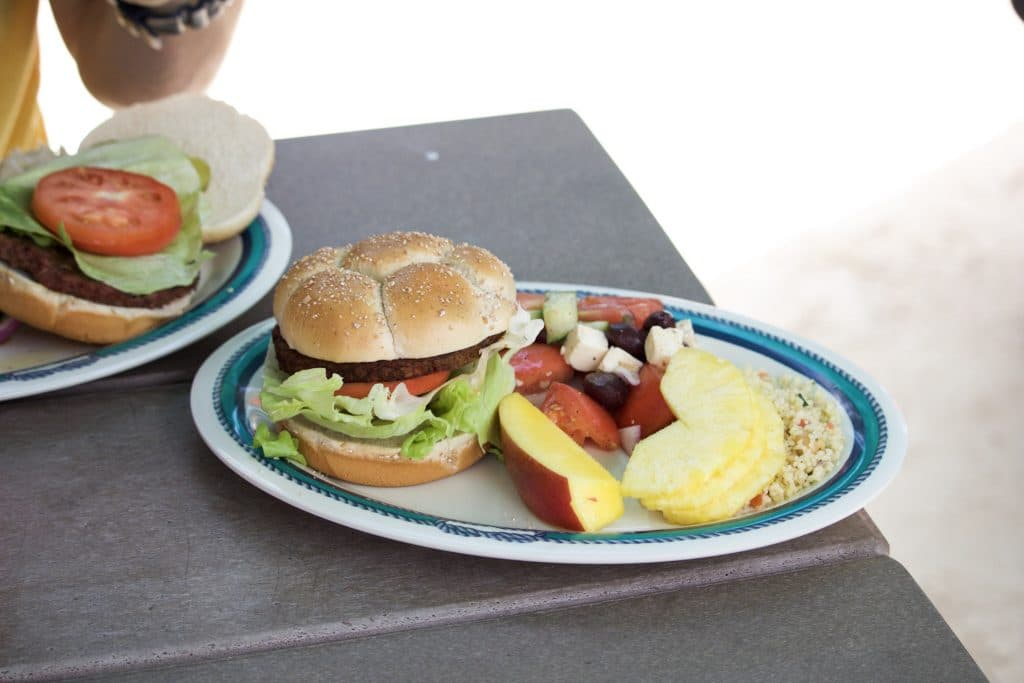 A plate with a vegan vegetable burger, pineapple, mango, greek salad, and couscous on a picnic table at Castaway Cay.