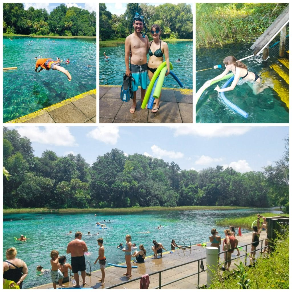 A collage of pictures showing people jump off the floating dock at Rainbow Springs State Park.
