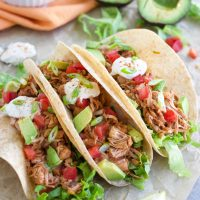 The Best Jackfruit Tacos