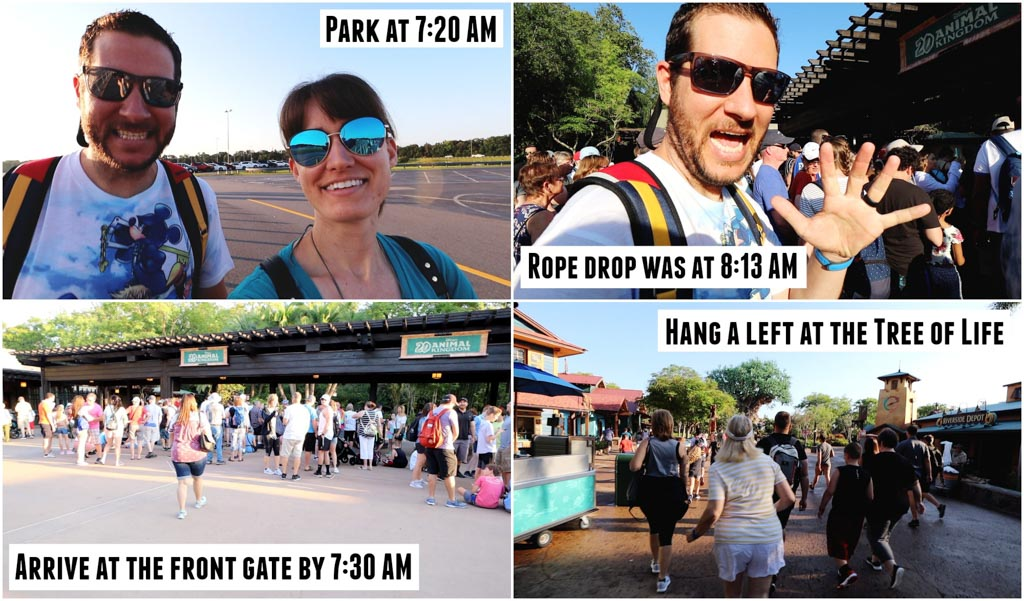 A collage of pictures showing the time stamps of a couple doing rope drop at Animal Kingdom.