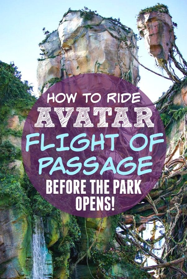 How to ride avatar flight of passage without a fast pass