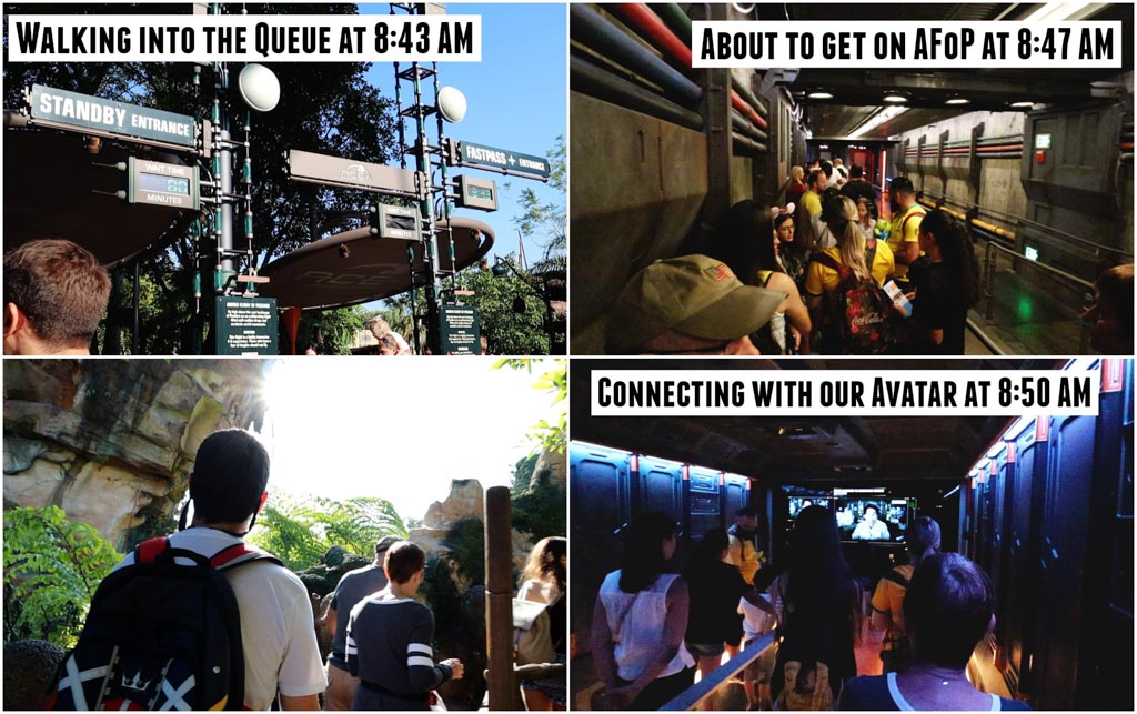 A collage of pictures showing how to rope drop Animal Kingdom and ride Flight of Passage without waiting in line.