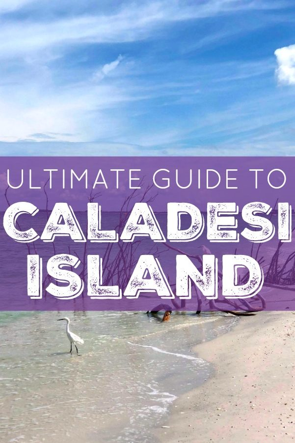 Ultimate Guide to Caladesi Island