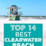 List of the Top 14 Best Clearwater Beach Restaurants